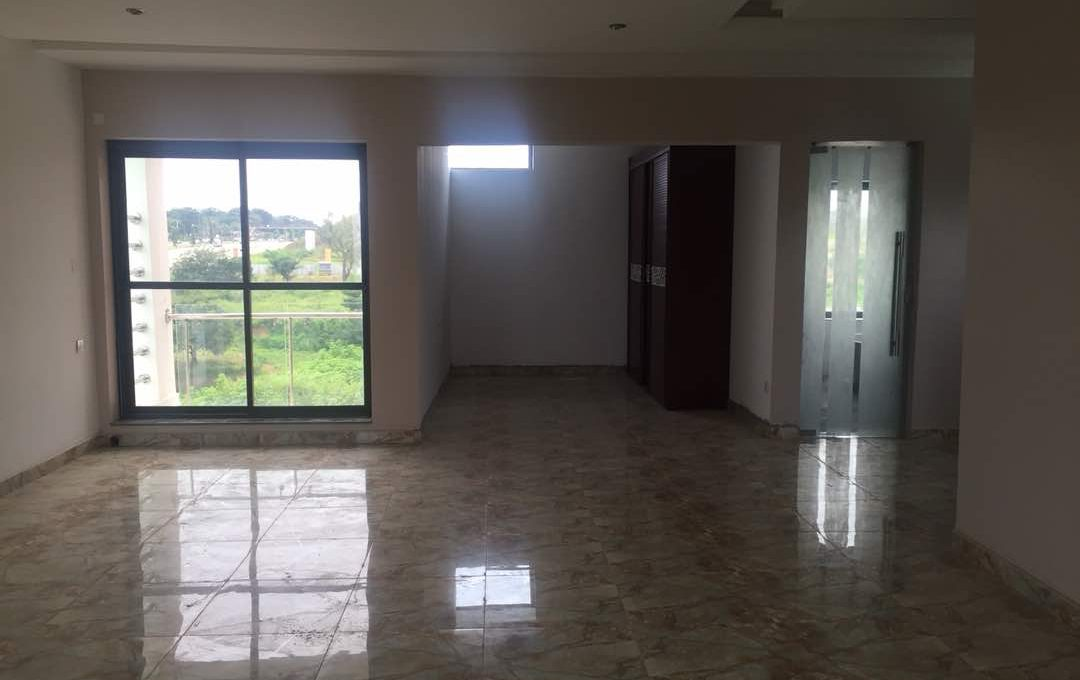 Automated 5-Bedroom semi-detached duplex for sale @ 400m in Asokoro (7)